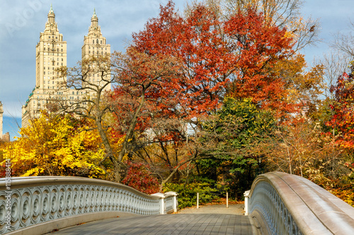 Photo  Display of autumn colors in Central Park by the Bow Bridge, with Upper West Side building behind the trees