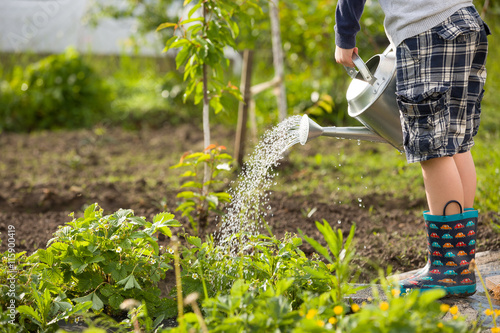 Cute Little Toddler Boy Watering Plants With Can In The Garden Adorable Child
