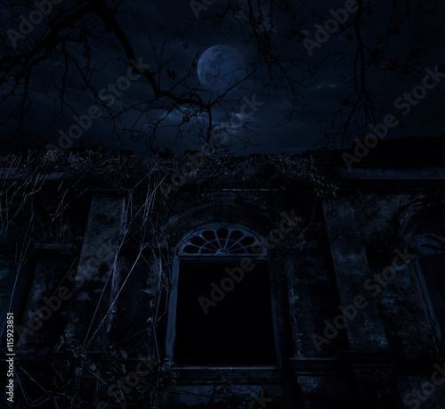 Wall Murals Cemetery Old ancient window castle with dead tree over moon and cloudy sk