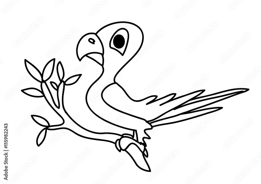 Fototapety, obrazy: papuga