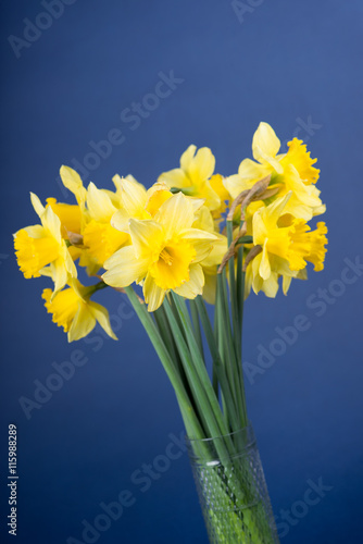 Wall Murals Narcissus narcisses in a vase