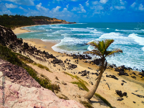 plakat Pipa Beach in Brazil