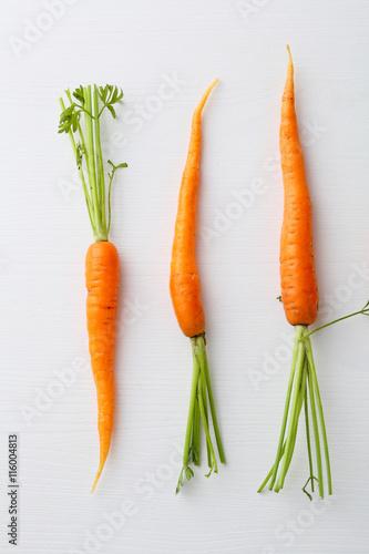 Fotomural fresh carrots on white background