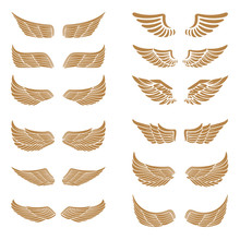 Set Of The Emblems With Wings In Gold Style Isolated On White Ba