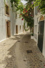 flowers streets in Ibiza,old town Spain