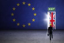 Male Enginner With Brexit Door