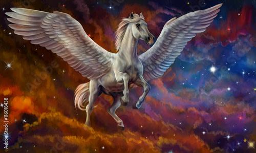 Пегас и звездное небо