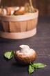 mushroom with green basil