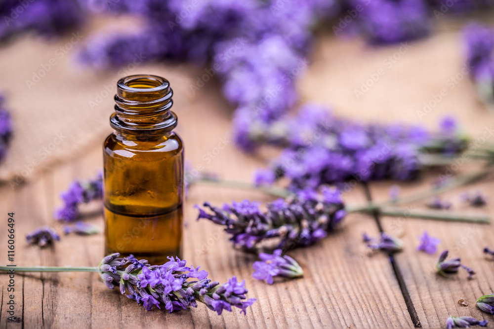 Fototapety, obrazy: Herbal oil and lavender flowers