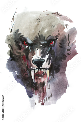 Watercolor drawing of black angry looking wolf Canvas Print
