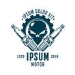 skull car spark plug emblem