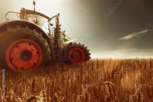 Fotografia  Traktor steht auf Getreidefeld