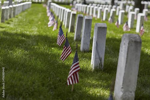 Keuken foto achterwand Begraafplaats Flags on Grave Sites at Arlington National Cemetery on Memorial Day