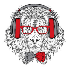 Panel Szklany Muzyka / instrumenty Leo headphones and sunglasses . Vector illustration.