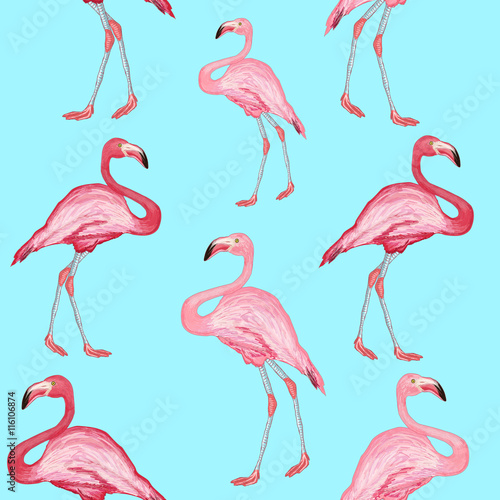 Tuinposter Flamingo Flamingo pattern beautiful bird flamingos on a blue background