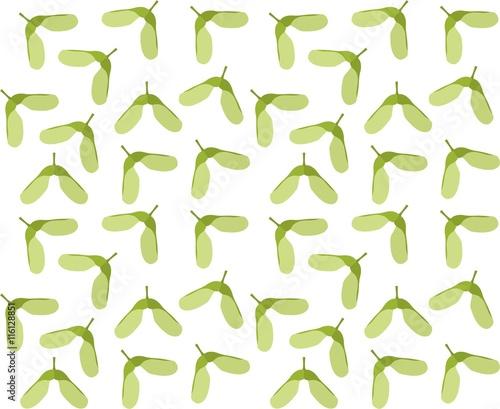 Valokuva  Samaras,maple keys,helicopters,whirlybirds or polynoses seamless pattern
