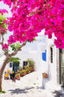 Traditional greek street with flowers in Amorgos island, Greece
