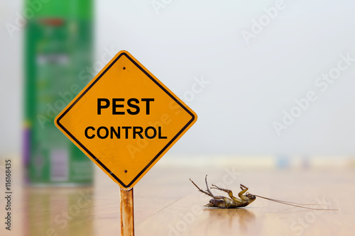 Dead cockroach on floor with caution sign pest control