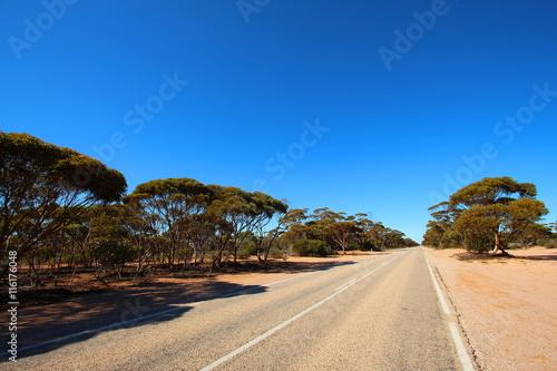 fototapeta na lodówkę Straight road through Australian outback