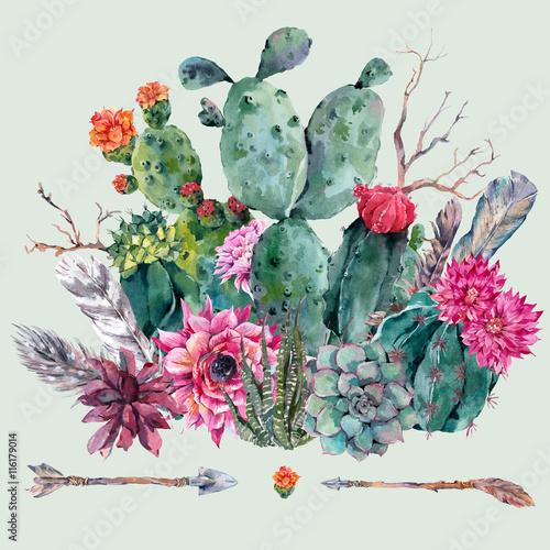 Watercolor cactus, succulent, flowers - 116179014