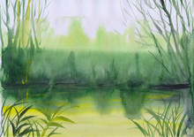 Watercolor Painting Of Green M...