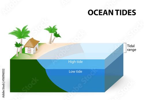 Carta da parati Ocean Tides