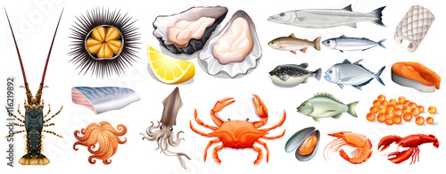 Foto Set of different kinds of seafood
