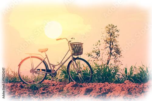 Akwarela malarstwo piękny rocznika rower w polu z kolorowym światłem słonecznym; styl vintage filtr na kartkę z życzeniami i pocztówkę.