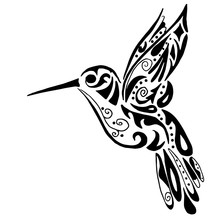 Hummingbird For Coloring Or T...