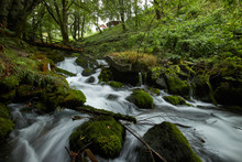 Fast Flowing Rivers In The Forests Of Montenegro