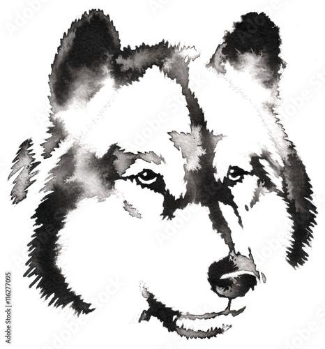 czarno-bialy-monochromatyczne-malowanie-woda-i-tuszem-rysowac-wilk-ilustracja