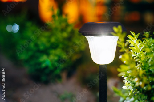 Aluminium Prints Garden Small Solar Garden Light, Lantern In Flower Bed. Garden Design.
