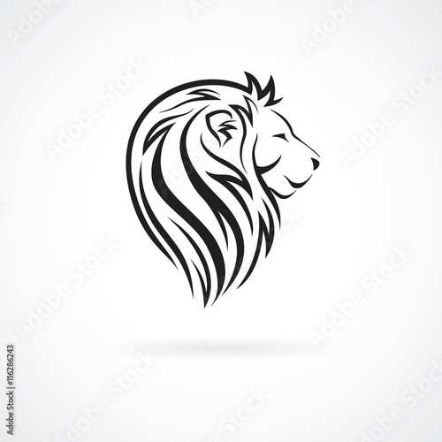 Fototapety, obrazy: Lion head, vector logo design template, concept icon for logotype, emblem, brand identity, vector illustration