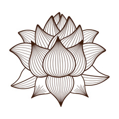 Naklejka lotus flower drawing isolated icon design, vector illustration graphic
