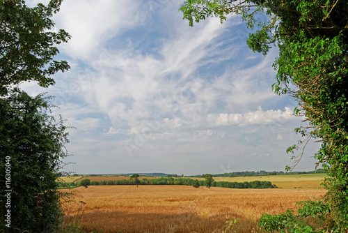 Fotografiet  Lincolnshire Wolds Farmland,UK