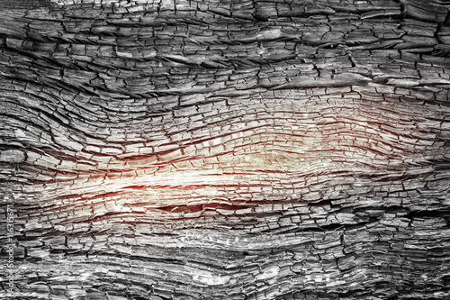 Foto auf AluDibond Brennholz-textur abstract wood charcoa fire burn Texture for background
