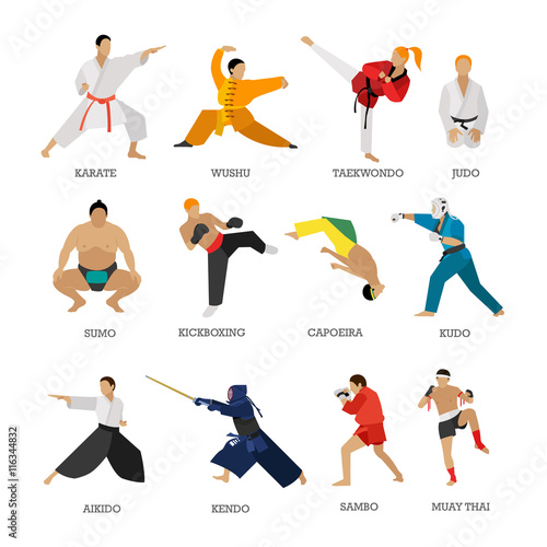 Fotografia  Vector set of martial arts people silhouette isolated on white background