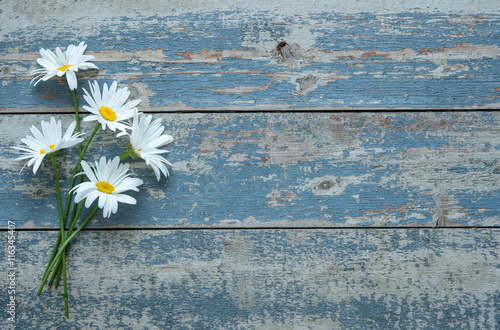 Foto op Canvas Madeliefjes Daisy flowers on wooden background