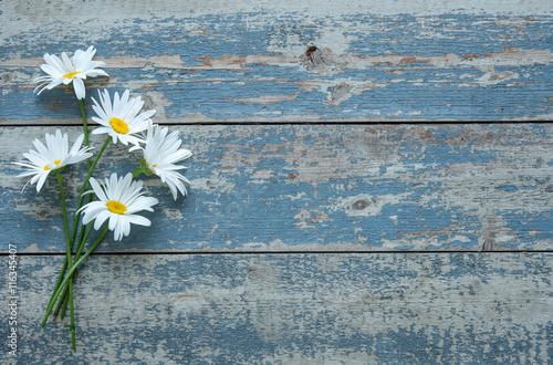 In de dag Madeliefjes Daisy flowers on wooden background