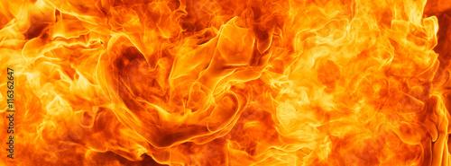Fotobehang Vuur blaze fire flame for banner background
