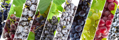 grappes de raisins Canvas Print