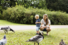 Mother And Son Feeding Canada Geese In Park