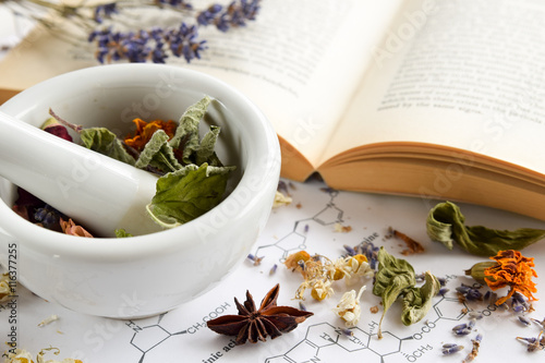Fototapeta natural apothecary with herbs and book obraz