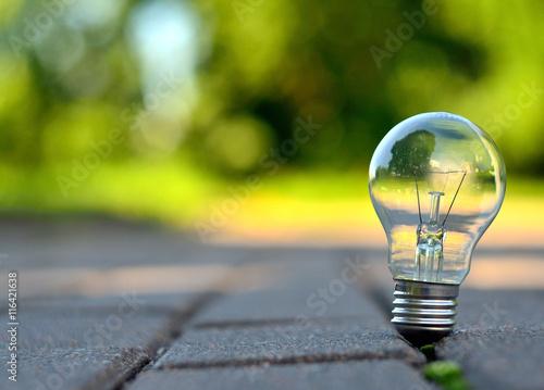 Lamp in park © Giddrid