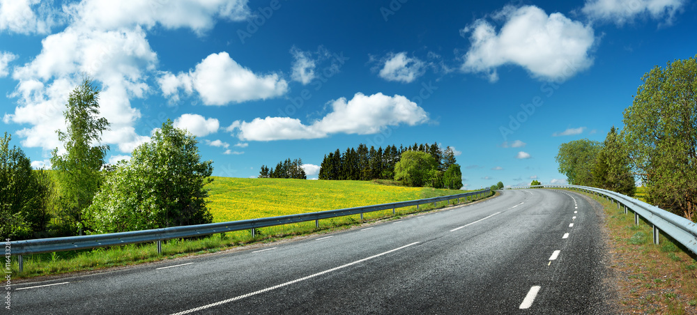 Fototapety, obrazy: asphalt road panorama in countryside on sunny spring day