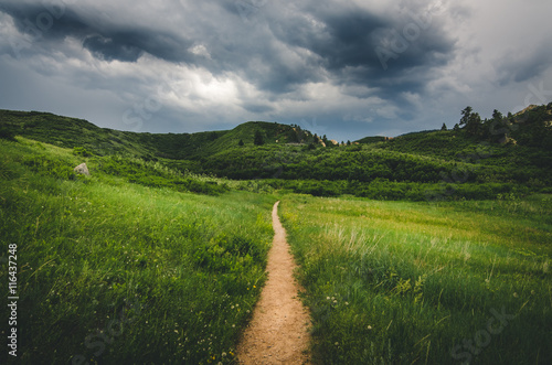 Foto op Plexiglas Weide, Moeras Landscape of a trail leading into field with hills before a storm.