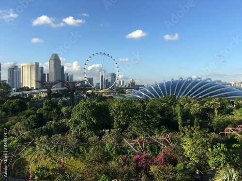 Photo  Flower dome and Singapore Flyer
