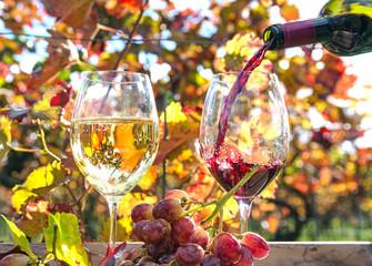 Obraz na Szkle Genuss in der Pfalz: Weinprobe im Herbst, Rotwein, Weißwein, Trauben :)