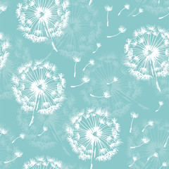 Panel Szklany Seamless dandelion pattern, vector plant and seeds illustration