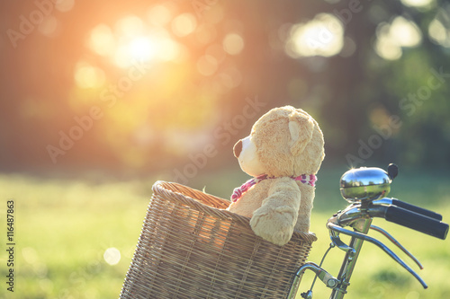 La pose en embrasure Velo Lovely brown teddy bear in rattan basket on vintage bike in gree